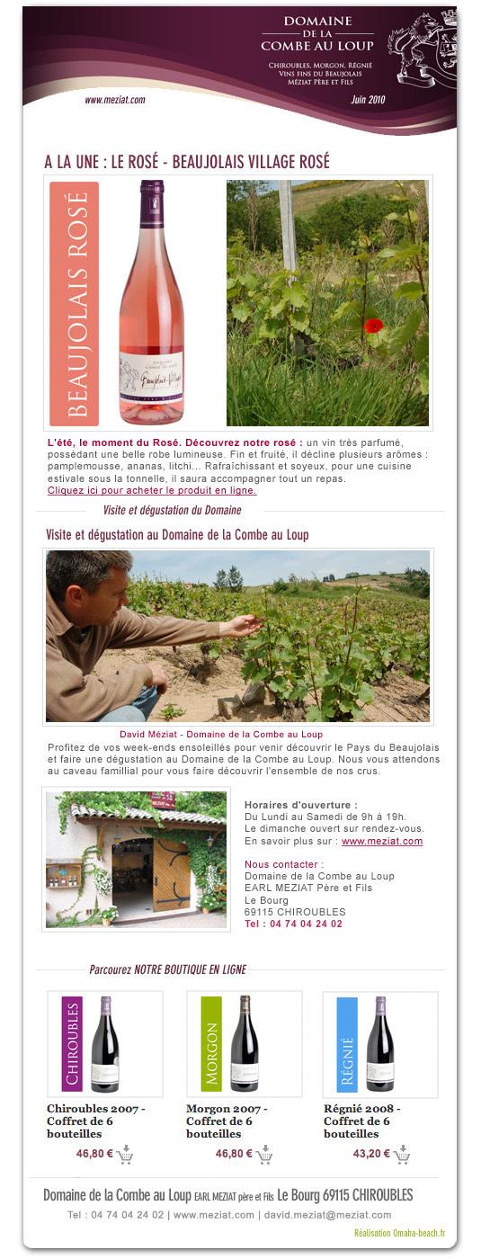 Newsletter Juin 2010