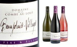 Beaujolais-Villages - Vins du Beaujolais