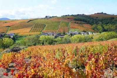 L'automne au Domaine de la Combe au Loup, offre de fin d'année !