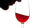 Comment bien déguster les vins du Beaujolais?